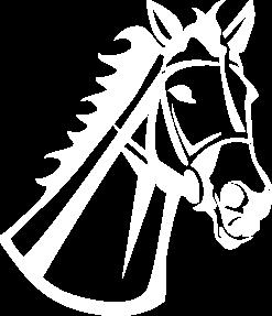 kon-ico